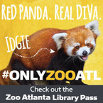 zoo pass image